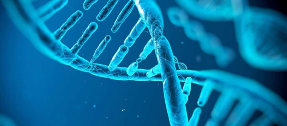 sabias-que-existen-caracteristicas-ginecologicas-que-tienen-un-factor-genetico.jpg